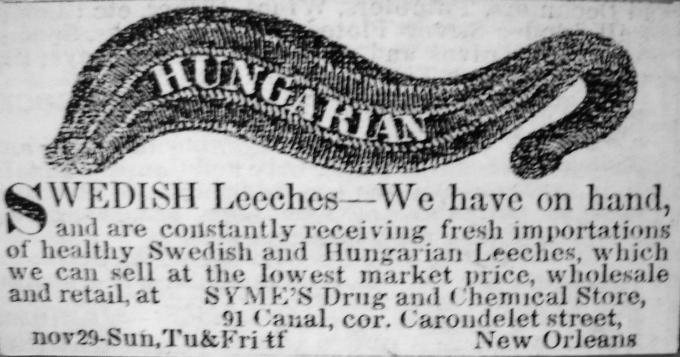 Hungarian_Leeches_New_Orleans_1852